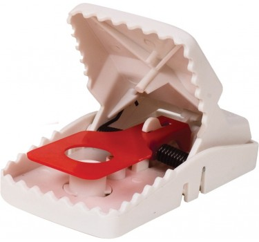 Trampa para Ratas de Click Simple (Pack de 1)