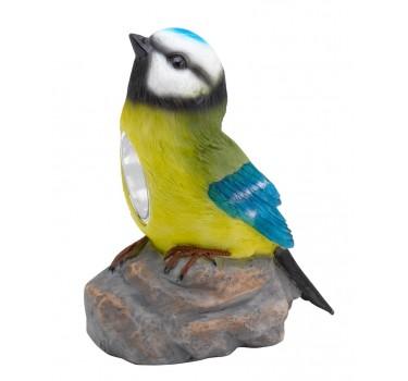 Pájaro jardín amarillo-azul